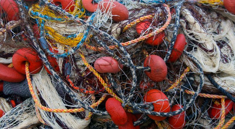Tangled Nets